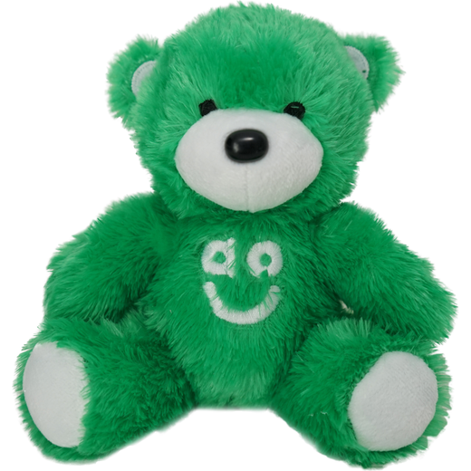 Bear The AO Teddy